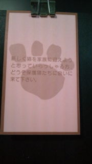 20100310003046.jpg