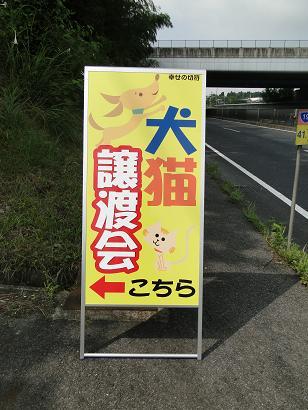 201008222.jpg
