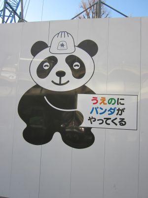 ぱんだ20110223
