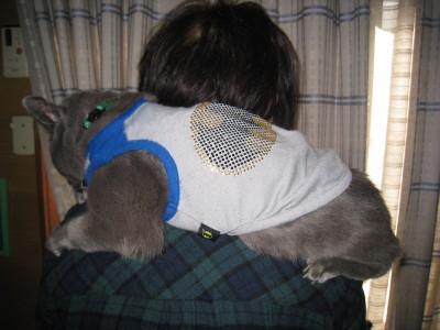 肩のりロッシー