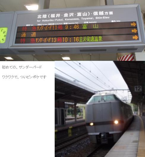 110822P82200441.jpg