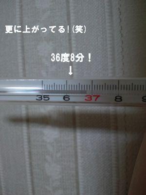 DCF00074.jpg