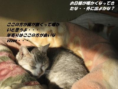 002_convert_20131117074916.jpg