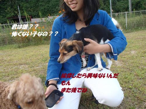 P9211814_convert_20140923131255.jpg