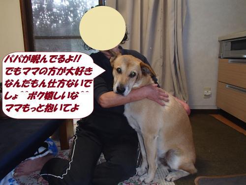 PA172116_convert_20141017144213.jpg