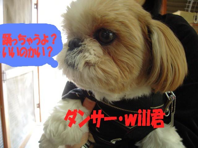 will君