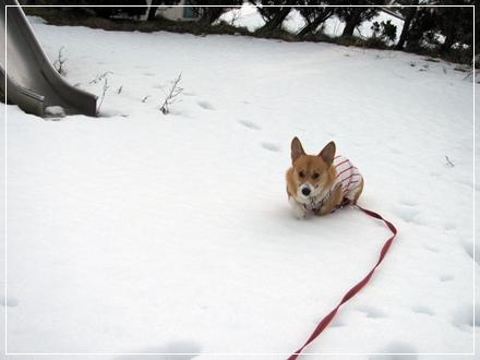 雪残る公園で