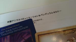 DSC_8599_convert_20141012192037.jpg
