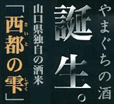 saitonoshizuku_logo2[1]