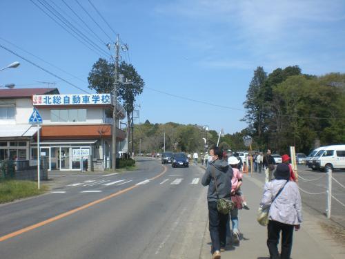 吉高の大桜5