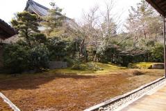 seiryouji17.jpg