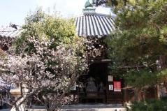 seiryouji21.jpg