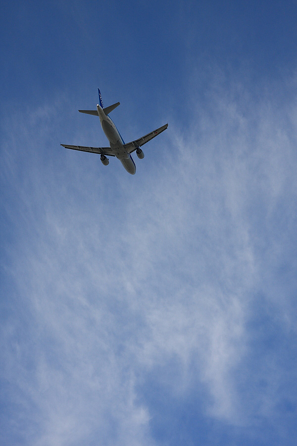 空を得た飛行機/ANA A320-211 ANA523@エアフロントオアシス下河原(by EOS 40D with SIGMA 18-50mm F2.8 EX DC MACRO)