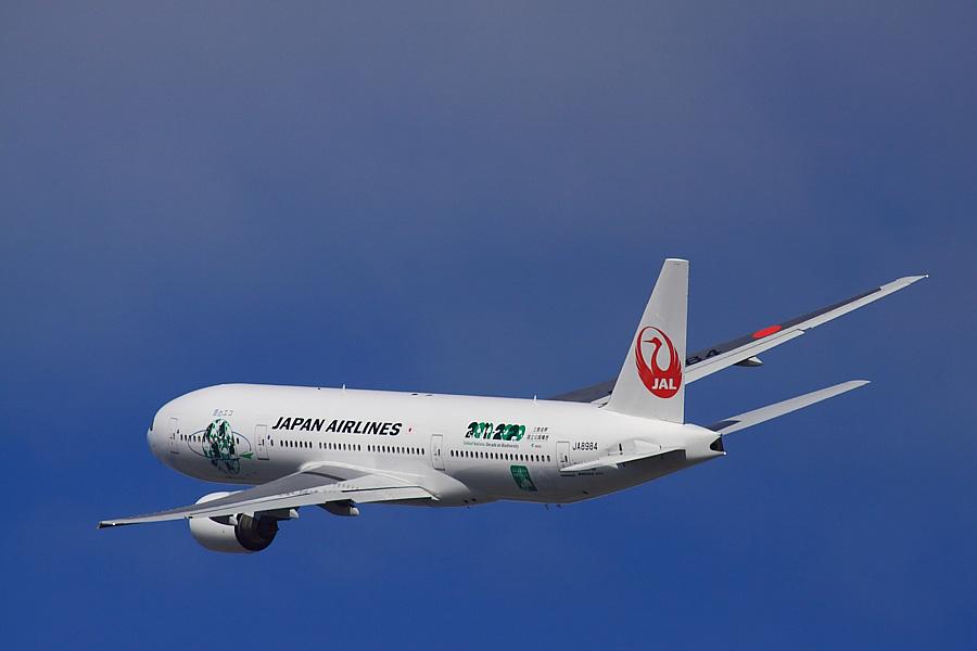 JAL B777-246 JAL110@RWY14Rエンド・猪名川土手(by EOS 50D with SIGMA APO 300mm F2.8 EX DG/HSM + APO TC2x EX DG)