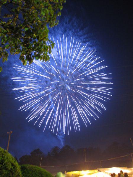 弥彦燈籠祭り2010