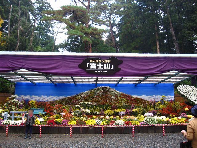 菊でできた富士山