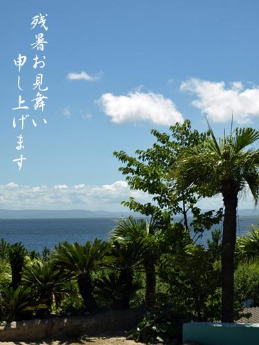 残暑見舞い2010-1