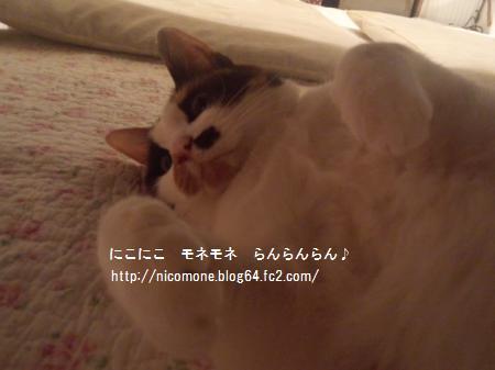 繝「繝阪♀縺ェ縺具シ狙convert_20120514121953