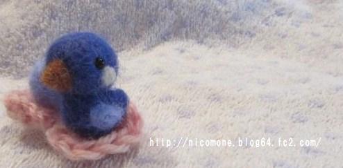 青い小鳥1