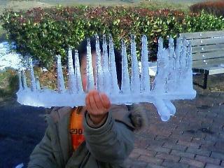 アーティストママのつれづれ日記-琵琶湖積雪氷柱