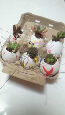 アーティストママのつれづれ日記-卵の殻のコンテナガーデン