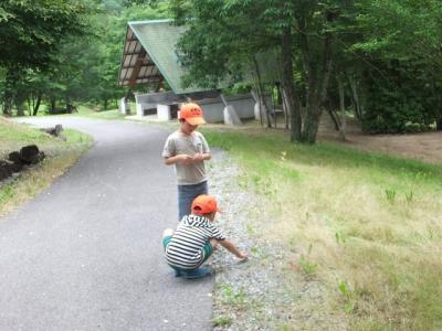 2011.06.26 矢野温泉四季の里 133