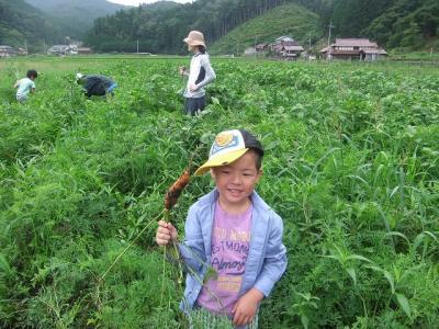 2011.07.30 大狩山 038