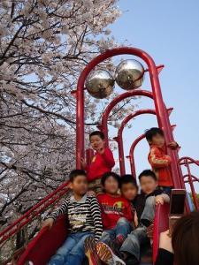 2012.04.09 花見 042