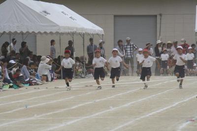 2012.06.02 運動会 105