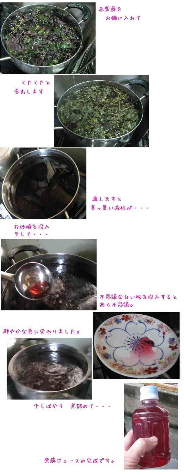 IMG_7490 紫蘇ジュース