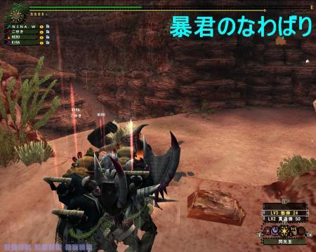 mhf_20100806_233935_984_convert_20100807200045.jpg