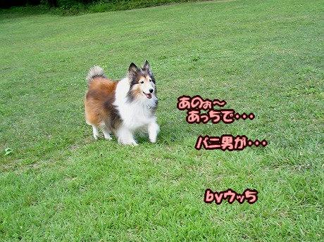 SANY7070_20100921161615.jpg