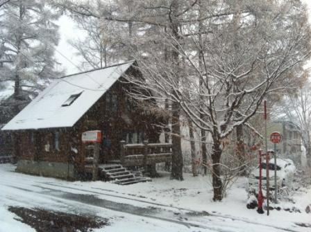 ニセコ吹雪