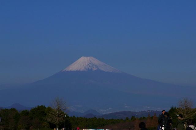 1205-fuji01.jpg