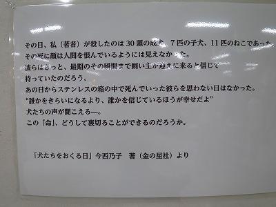 s-IMG_5445.jpg