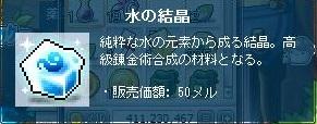 Maple110829_213655.jpg