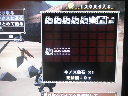 DSCF0245_convert_20100717160004.jpg