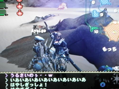 DSCF0309_convert_20100719121929.jpg