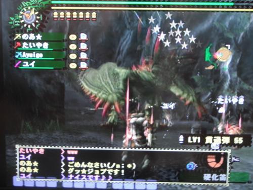 DSCF0678_convert_20100805125837.jpg