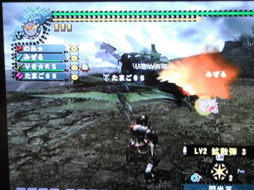 DSCF0747_convert_20100807200358.jpg