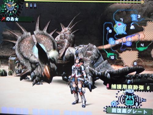 DSCF0754_convert_20100807200759.jpg