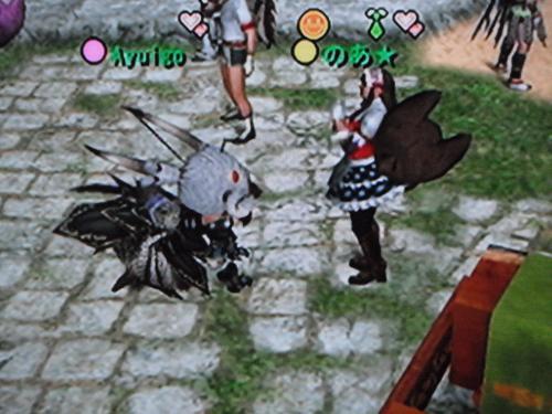 DSCF0962_convert_20100817170336.jpg