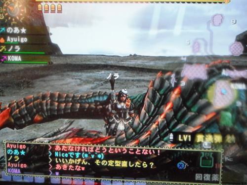 DSCF0980_convert_20100818121201.jpg