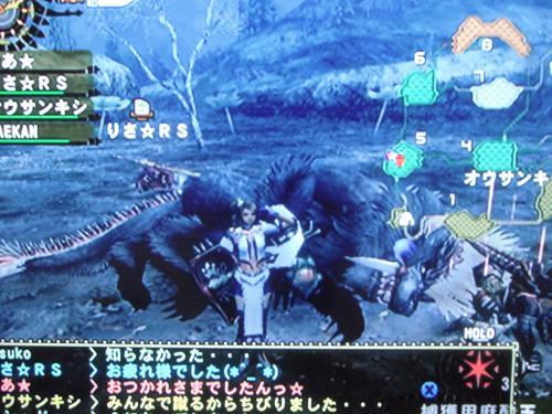 DSCF2061_convert_20101009131318.jpg