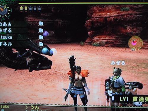 DSCF2246_convert_20101019130922.jpg