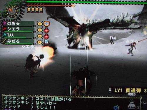 DSCF2660_convert_20101121111449.jpg
