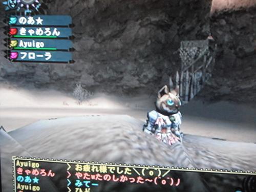 DSCF2908_convert_20101211162105.jpg