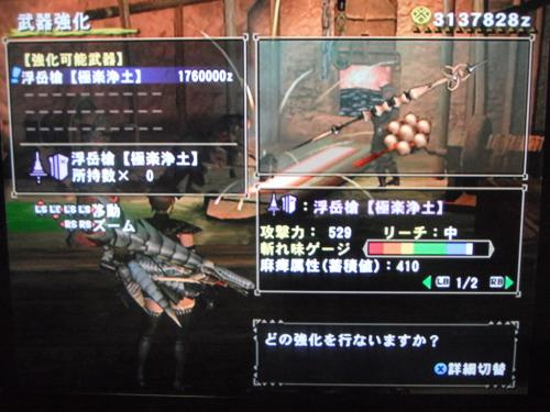 DSCF2960_convert_20101214095009.jpg