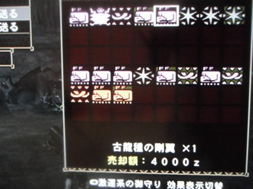 DSCF3136_convert_20101231111940.jpg