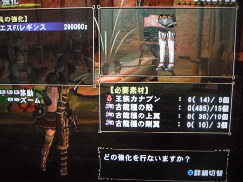 DSCF3145_convert_20110102130258.jpg
